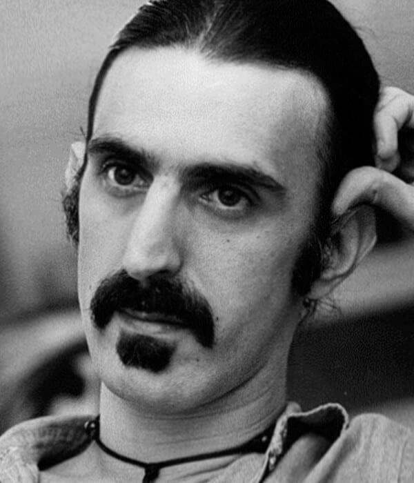 Zappa cool beard style