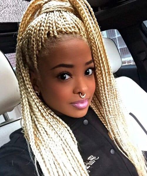 Natural hairstyles for african american women and girls micro braids and blonde extensions hairstyle for natural hair pmusecretfo Gallery
