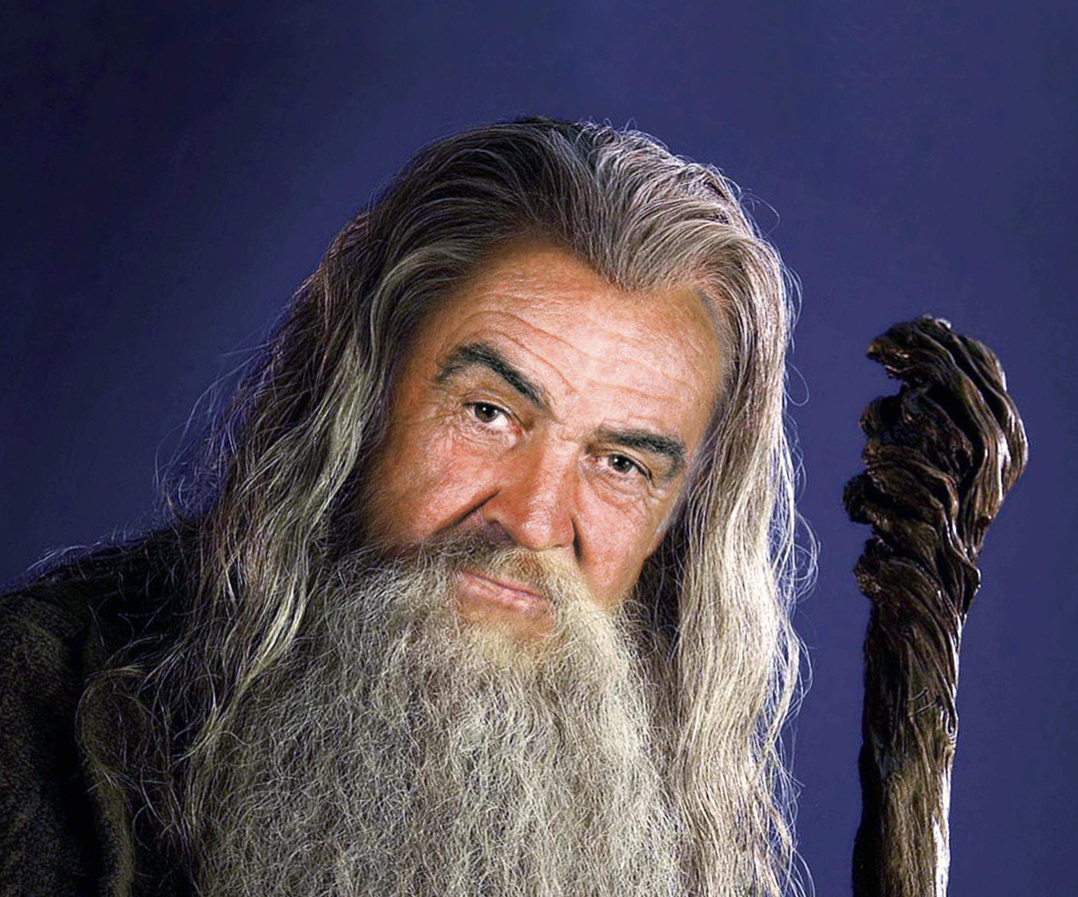 A long bearded look like Sean Connery wears.
