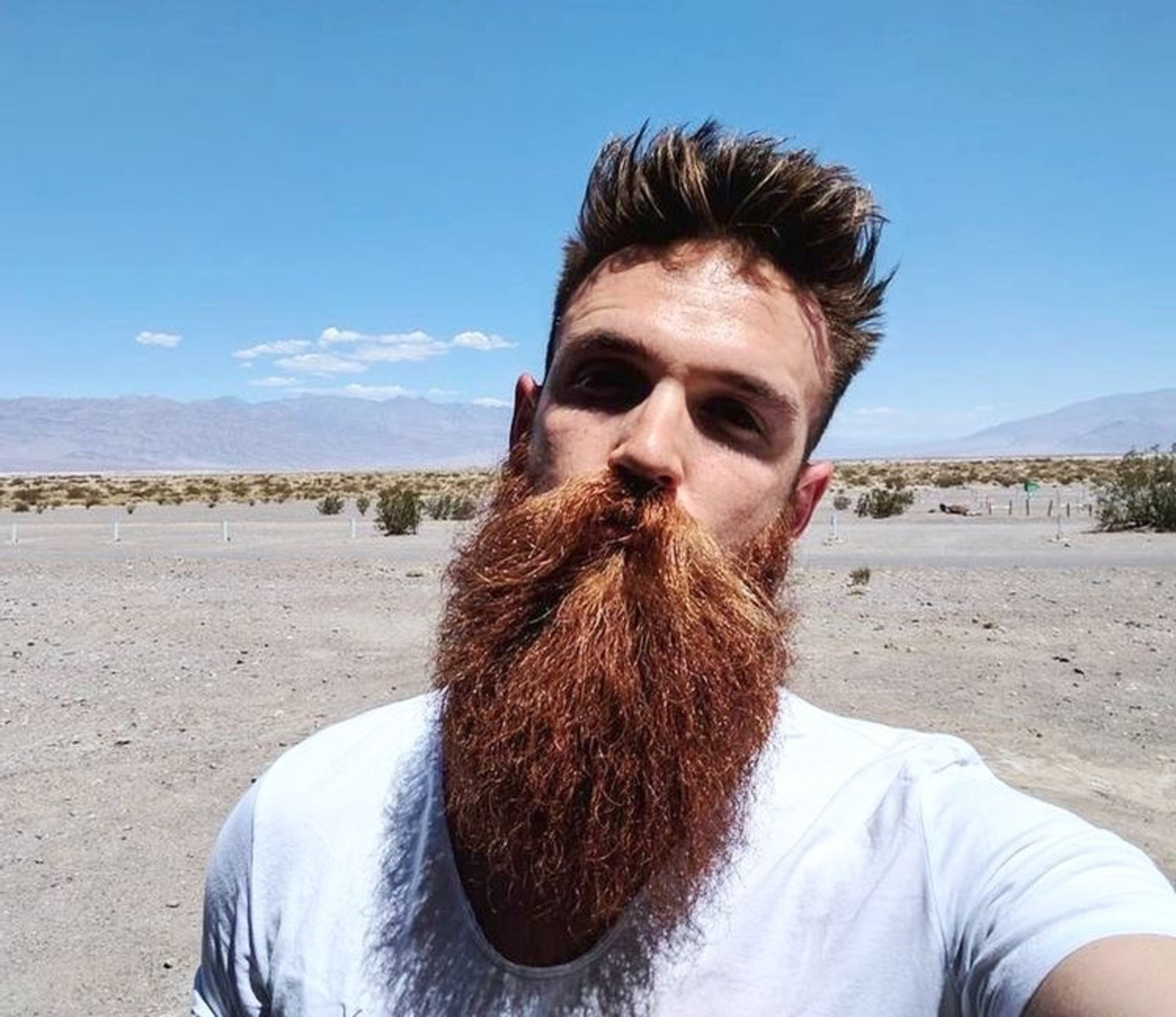 A long tapered beard for men.