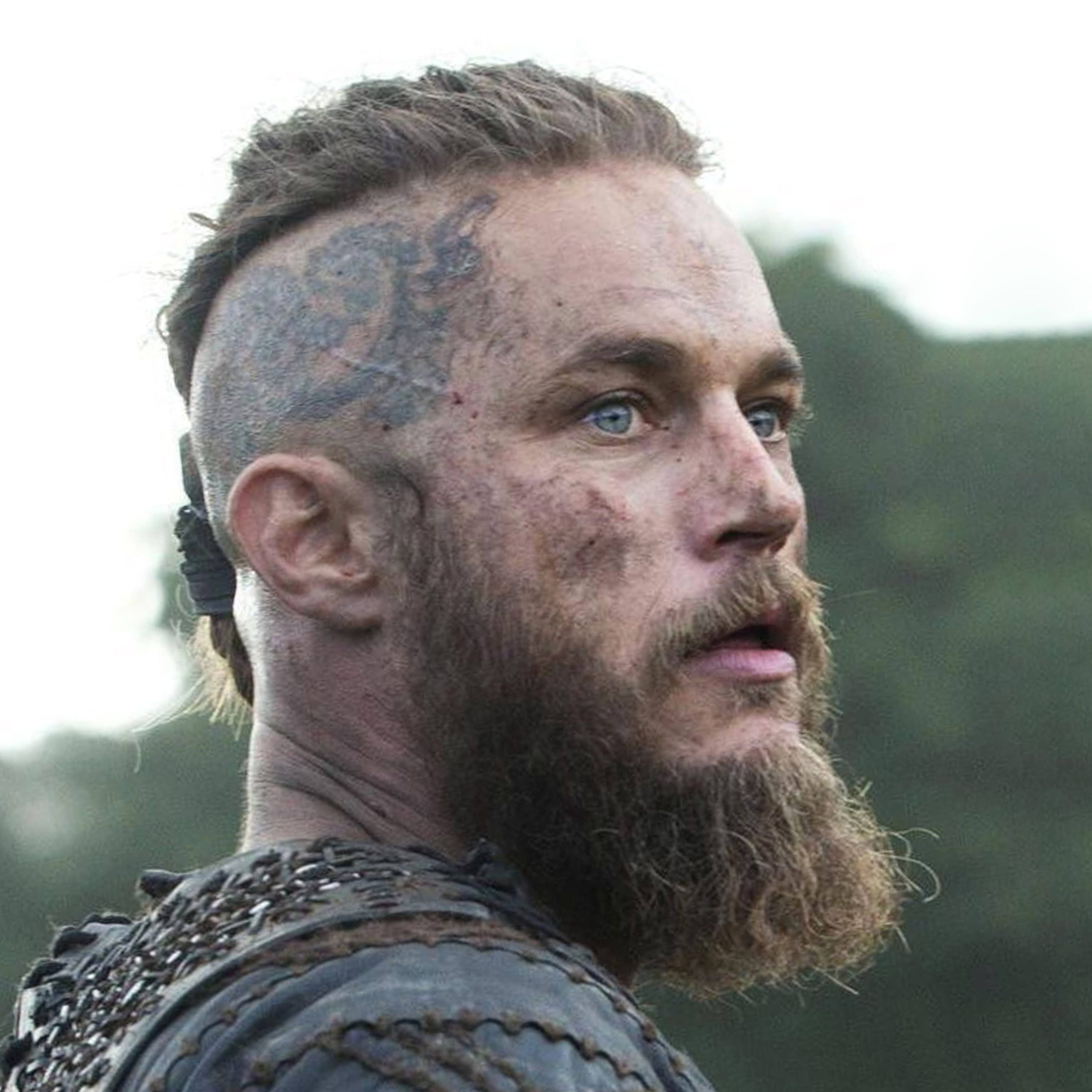 A long beard in the Viking style.